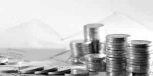 Os Melhores Investimentos - Investir em Boi Gordo